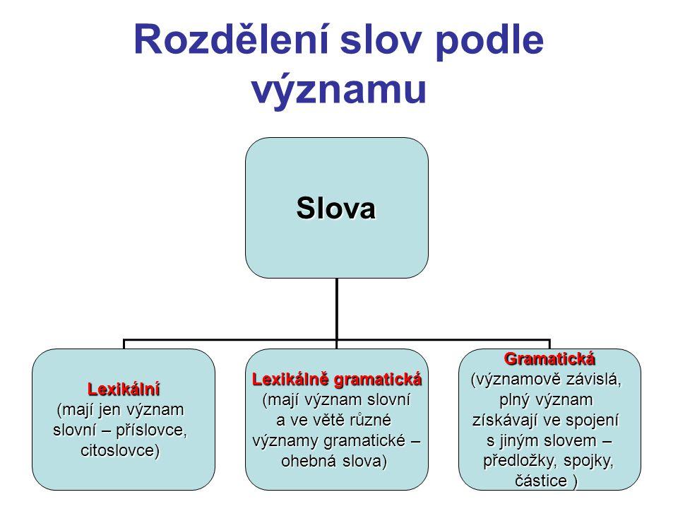 Další význam slov Význam slov Symbolický - náznakový, to, co má platnost symbolu, lze vyjádřit symbolem např.