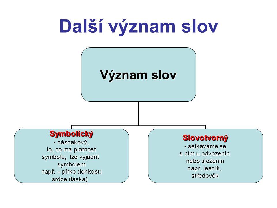 Další význam slov Význam slov Symbolický - náznakový, to, co má platnost symbolu, lze vyjádřit symbolem např. – pírko (lehkost) srdce (láska) Slovotvo