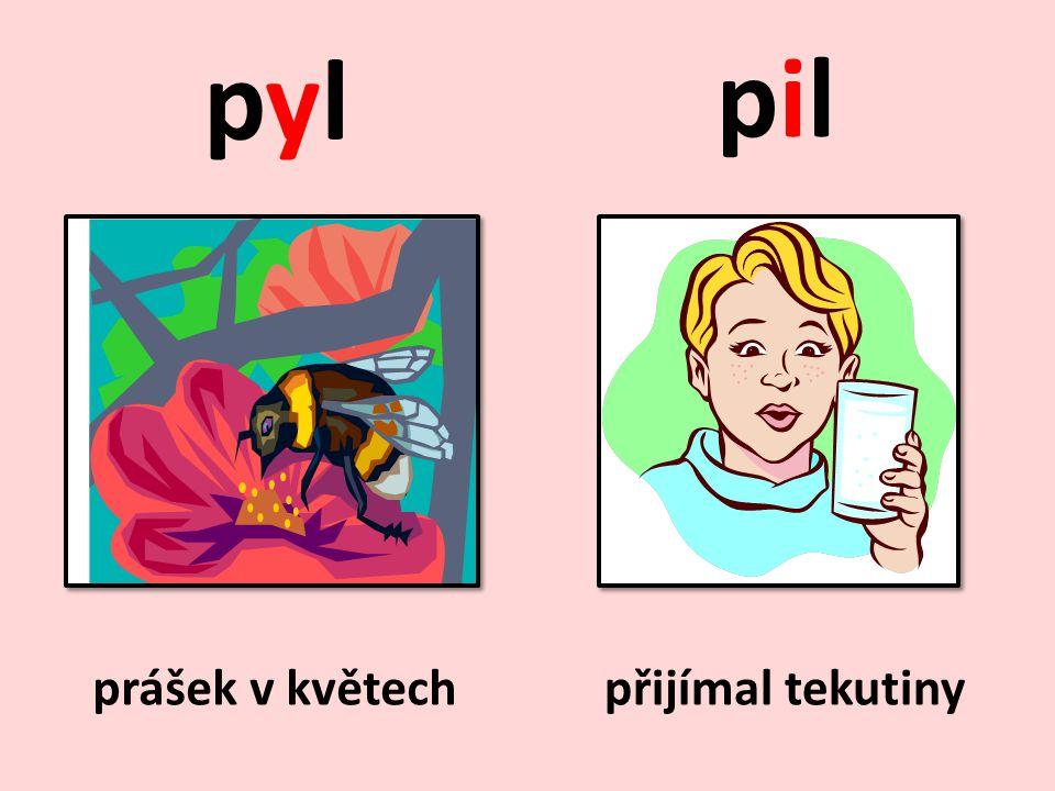 Doplňte y, ý/i, í a věty napište do sešitu.Včely pilně sbíraly p_l.