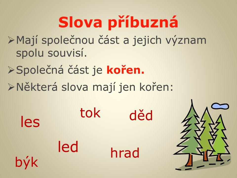 Slova příbuzná  Mají společnou část a jejich význam spolu souvisí.  Společná část je kořen.  Některá slova mají jen kořen: les led tok hrad děd býk