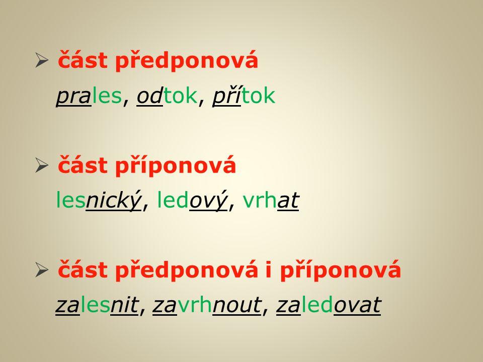Kolik slov příbuzných dokážete najít k danému kořeni.