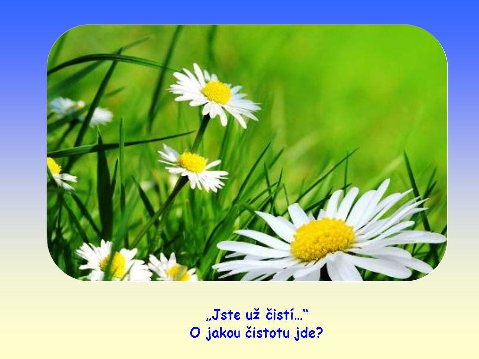 Ježíšovo slovo se též přirovnává k semeni zasetému do srdce věřícího člověka.