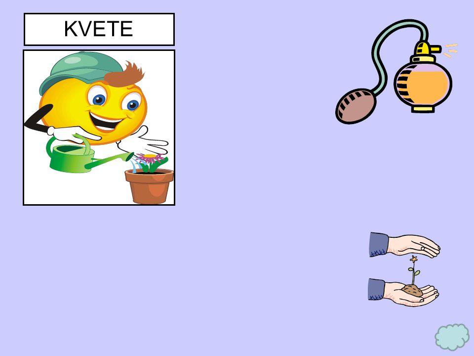 KVETE