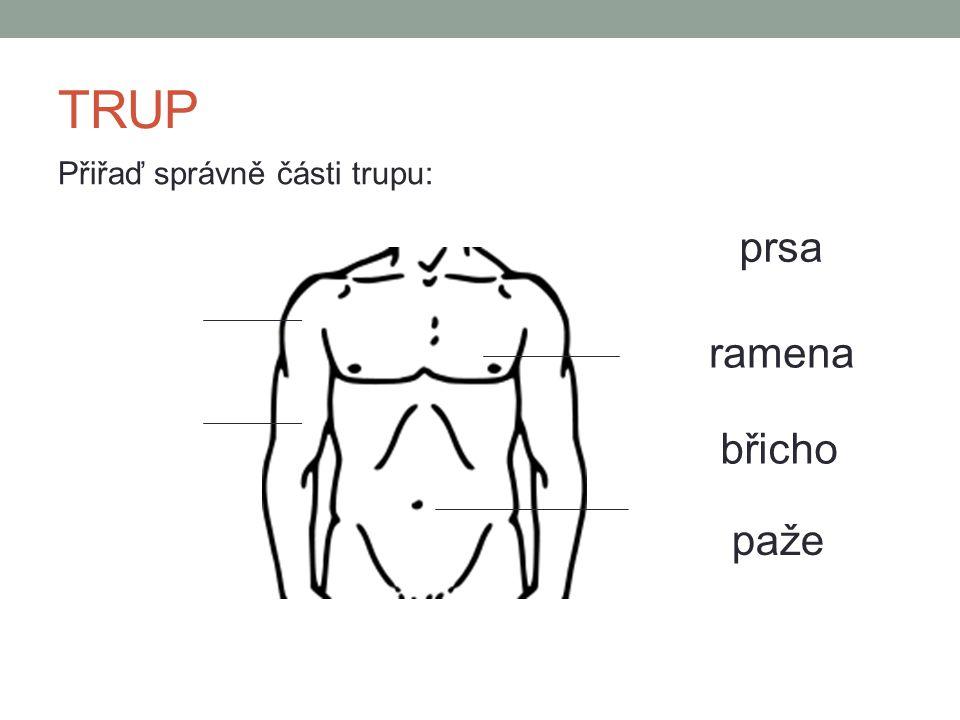 ZÁDA Přiřaď správně části zad: ramena lopatky záda hýždě