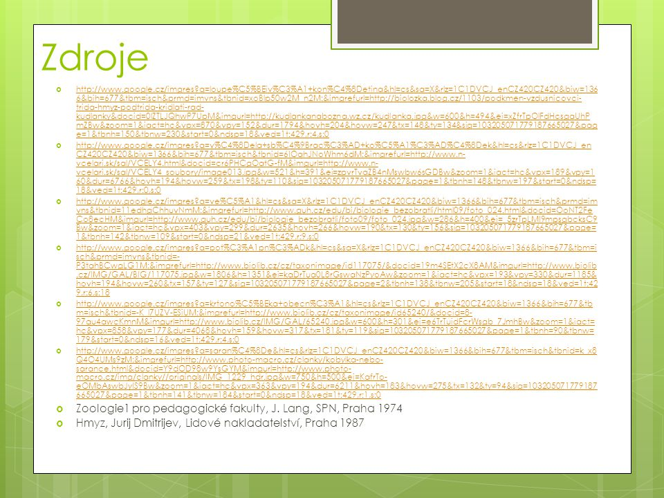 Zdroje  http://www.google.cz/imgres?q=loupe%C5%BEiv%C3%A1+kon%C4%8Detina&hl=cs&sa=X&rlz=1C1DVCJ_enCZ420CZ420&biw=136 6&bih=677&tbm=isch&prmd=imvns&tb