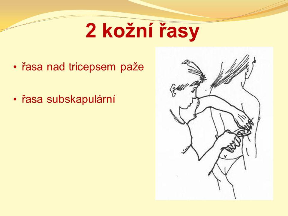 2 kožní řasy řasa nad tricepsem paže řasa subskapulární