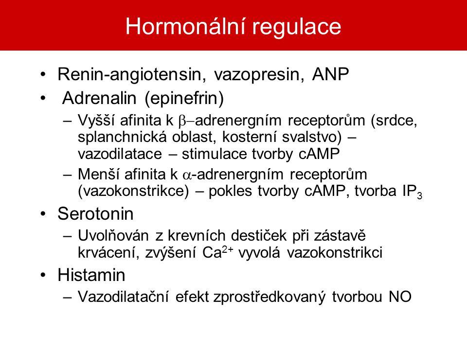 Hormonální regulace Renin-angiotensin, vazopresin, ANP Adrenalin (epinefrin) –Vyšší afinita k  adrenergním receptorům (srdce, splanchnická oblast, k