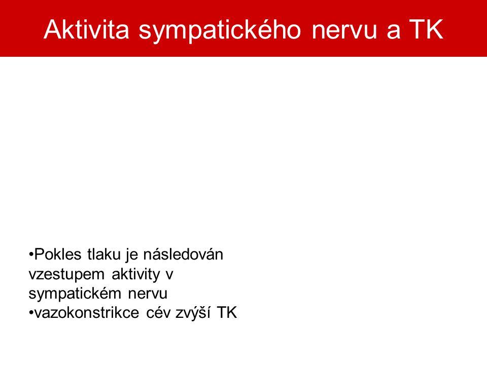 Aktivita sympatického nervu a TK Pokles tlaku je následován vzestupem aktivity v sympatickém nervu vazokonstrikce cév zvýší TK
