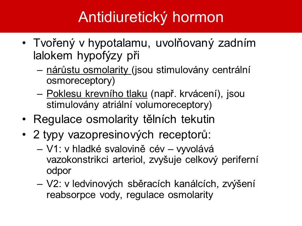 Antidiuretický hormon Tvořený v hypotalamu, uvolňovaný zadním lalokem hypofýzy při –nárůstu osmolarity (jsou stimulovány centrální osmoreceptory) –Pok