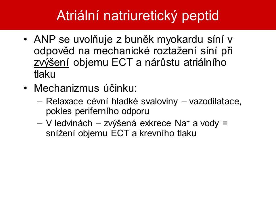 Atriální natriuretický peptid ANP se uvolňuje z buněk myokardu síní v odpověd na mechanické roztažení síní při zvýšení objemu ECT a nárůstu atriálního