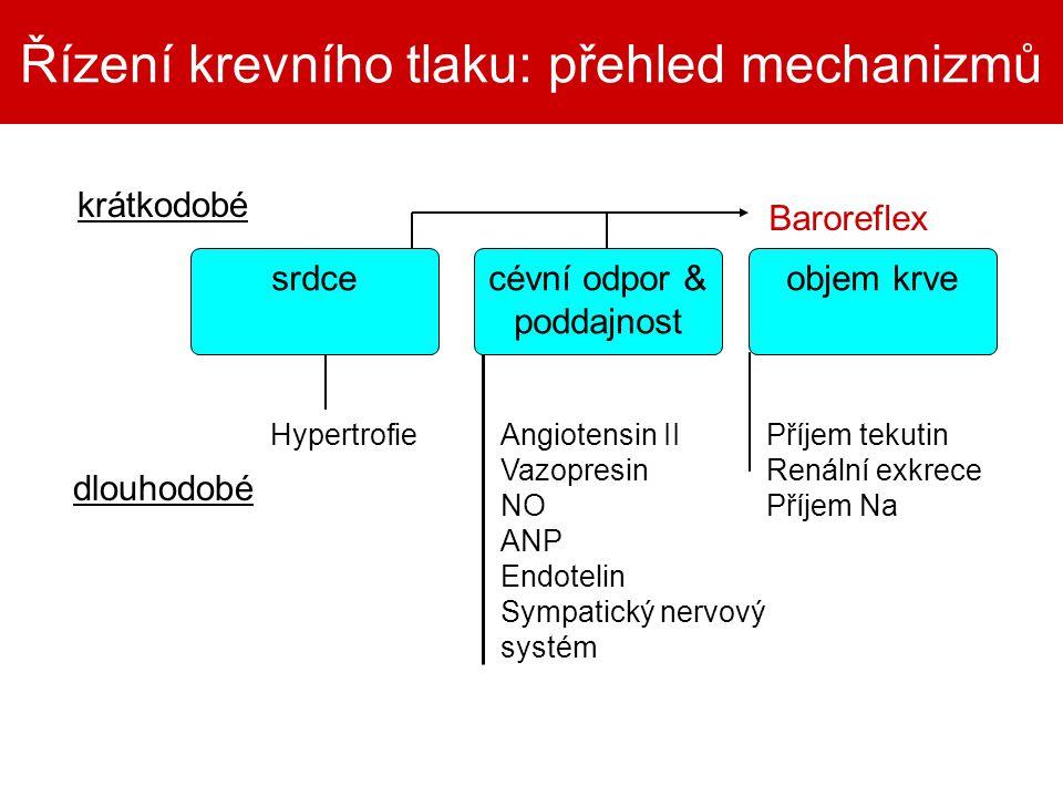Řízení krevního tlaku: přehled mechanizmů cévní odpor & poddajnost krátkodobé Baroreflex dlouhodobé HypertrofieAngiotensin II Vazopresin NO ANP Endote