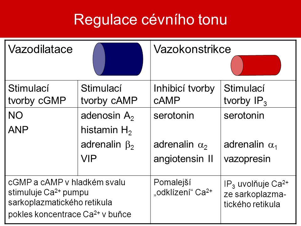 Regulace cévního tonu VazodilataceVazokonstrikce Stimulací tvorby cGMP Stimulací tvorby cAMP Inhibicí tvorby cAMP Stimulací tvorby IP 3 NO ANP adenosi