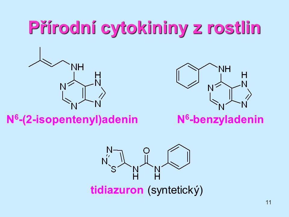 11 Přírodní cytokininy z rostlin N 6 -(2-isopentenyl)adeninN 6 -benzyladenin tidiazuron (syntetický)