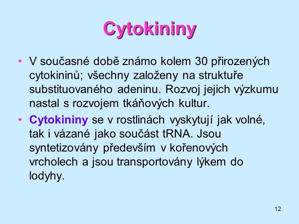 12 Cytokininy V současné době známo kolem 30 přirozených cytokininů; všechny založeny na struktuře substituovaného adeninu. Rozvoj jejich výzkumu nast