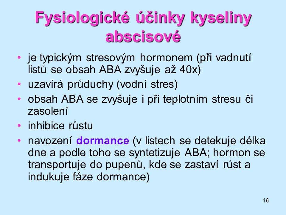 16 Fysiologické účinky kyseliny abscisové je typickým stresovým hormonem (při vadnutí listů se obsah ABA zvyšuje až 40x) uzavírá průduchy (vodní stres