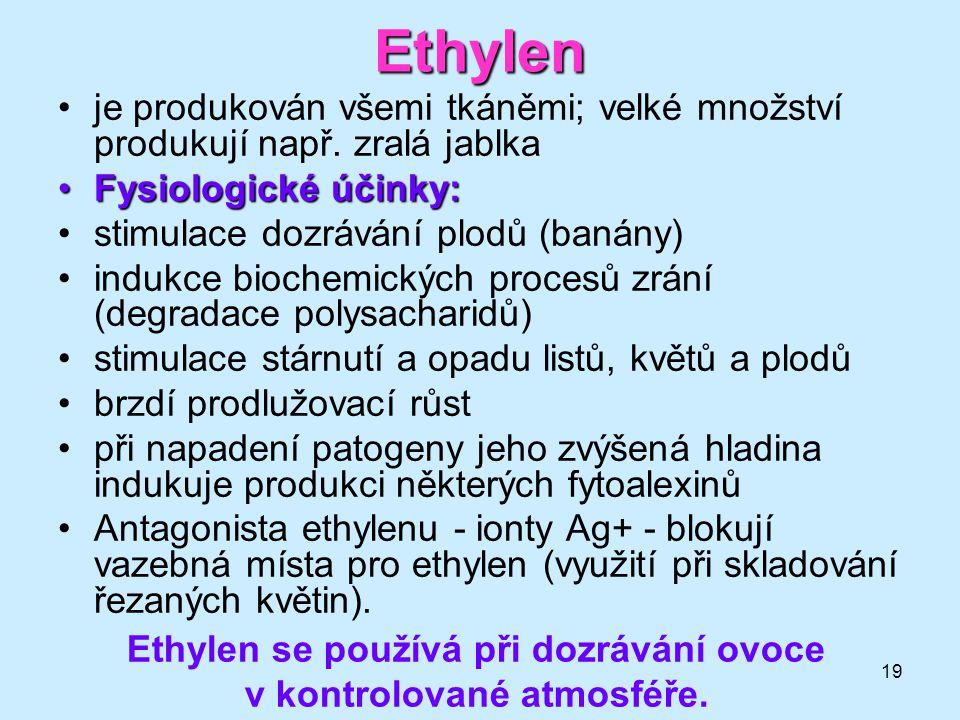 19 Ethylen je produkován všemi tkáněmi; velké množství produkují např. zralá jablka Fysiologické účinky:Fysiologické účinky: stimulace dozrávání plodů