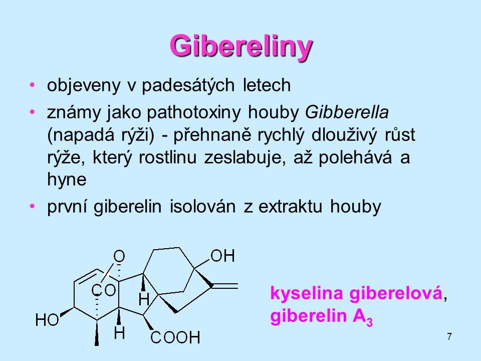 7 Gibereliny objeveny v padesátých letech známy jako pathotoxiny houby Gibberella (napadá rýži) - přehnaně rychlý dlouživý růst rýže, který rostlinu z