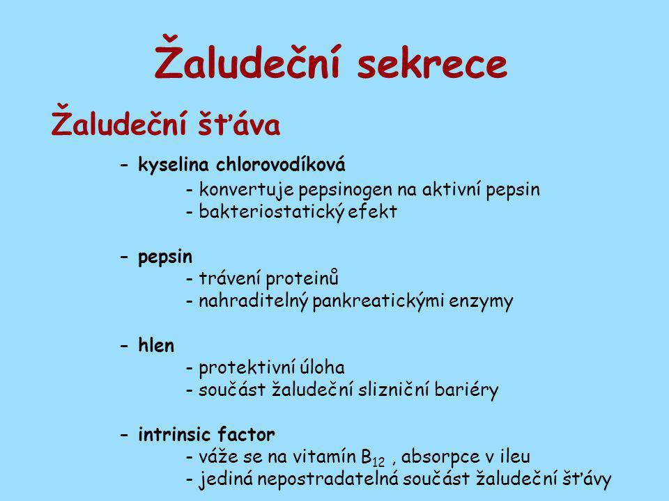 Žaludeční sekrece Žaludeční šťáva - kyselina chlorovodíková - konvertuje pepsinogen na aktivní pepsin - bakteriostatický efekt - pepsin - trávení prot