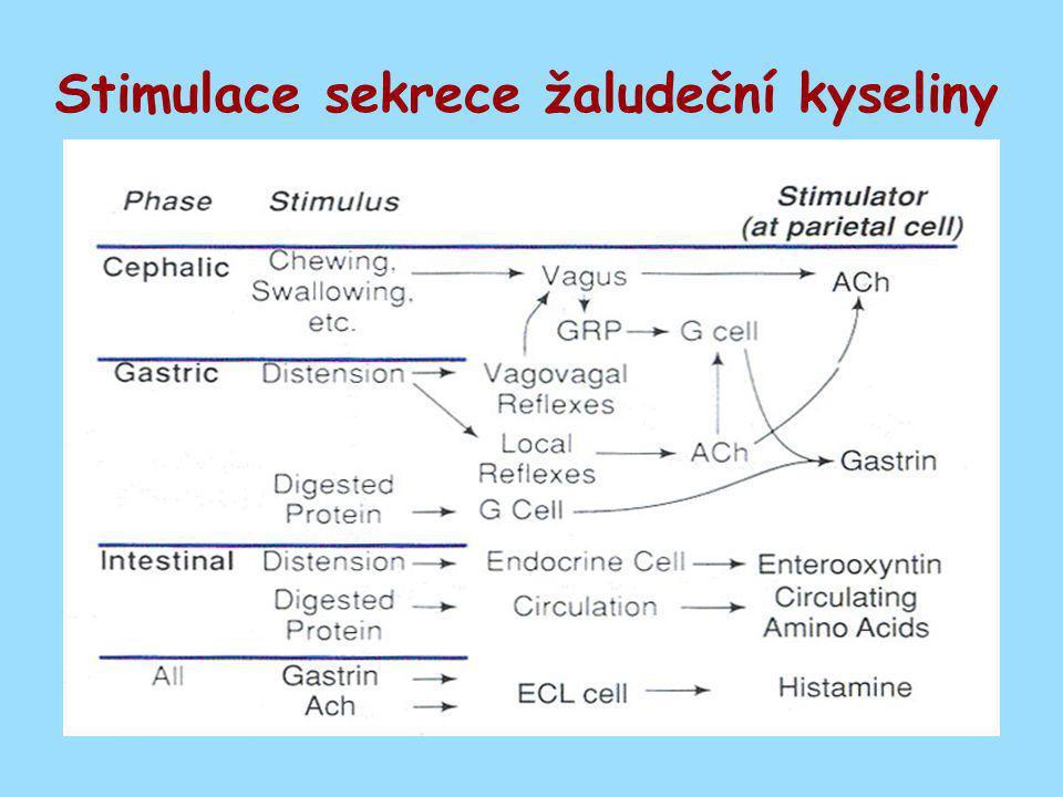 Stimulace sekrece žaludeční kyseliny