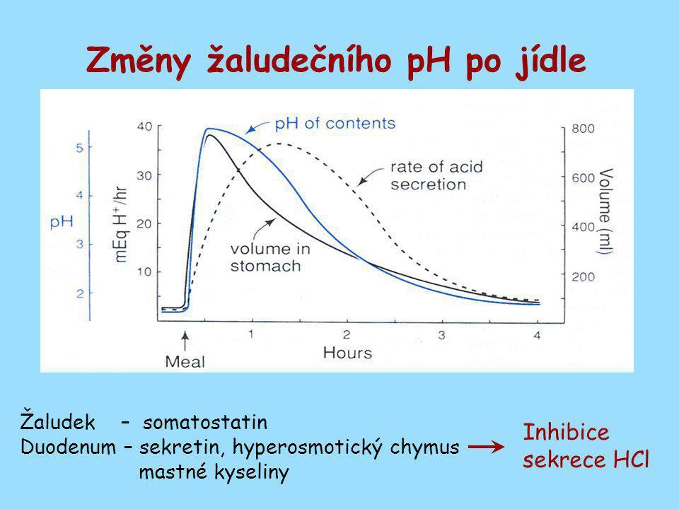 Změny žaludečního pH po jídle Žaludek – somatostatin Duodenum – sekretin, hyperosmotický chymus mastné kyseliny Inhibice sekrece HCl