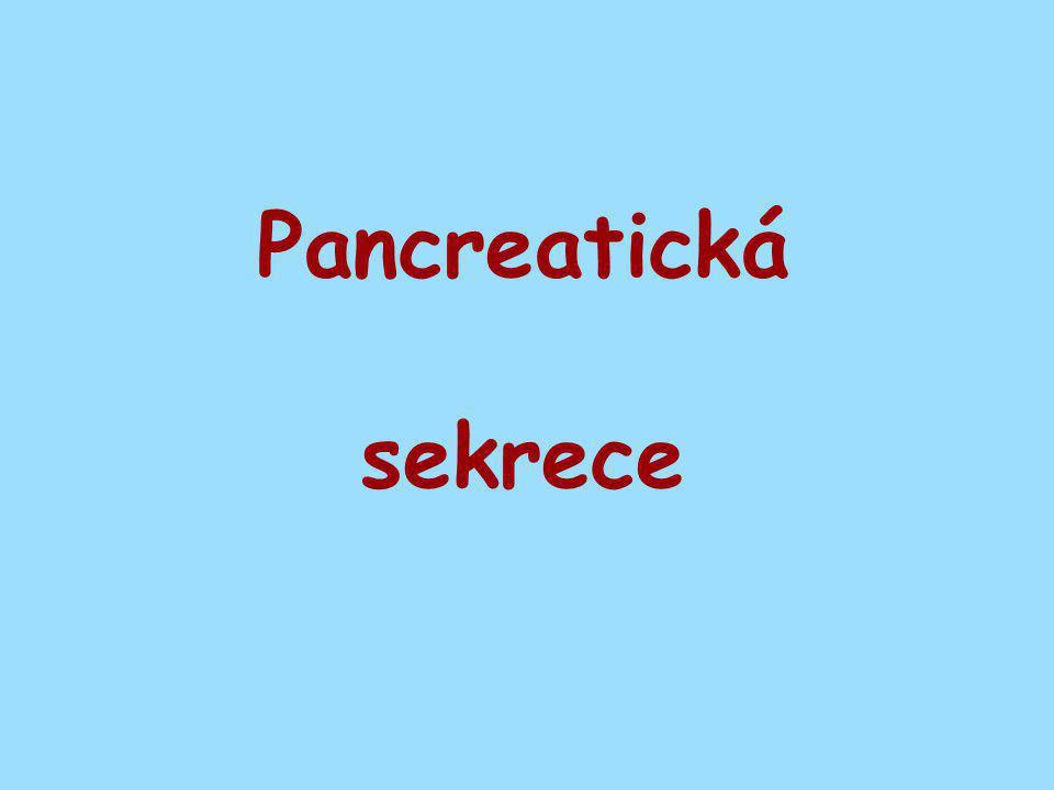 Pancreatická sekrece