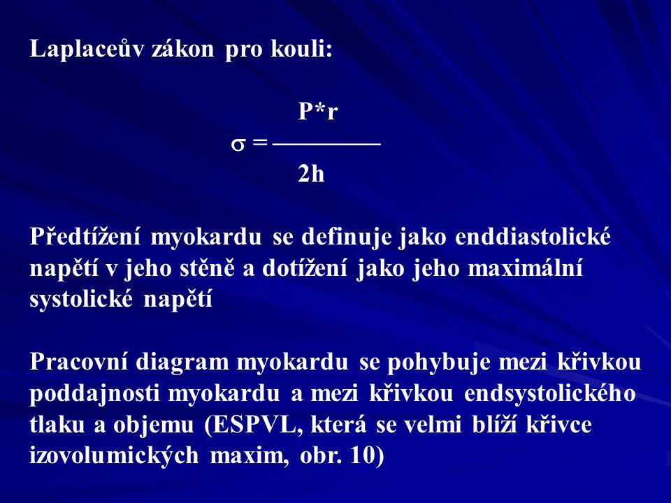 Laplaceův zákon pro kouli: P*r  =  2h Předtížení myokardu se definuje jako enddiastolické napětí v jeho stěně a dotížení jako jeho maximální systolické napětí Pracovní diagram myokardu se pohybuje mezi křivkou poddajnosti myokardu a mezi křivkou endsystolického tlaku a objemu (ESPVL, která se velmi blíží křivce izovolumických maxim, obr.