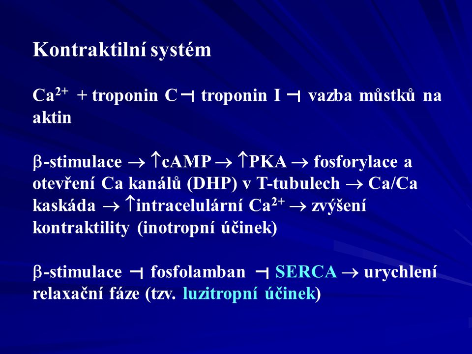 3. Diastolická funkce srdce