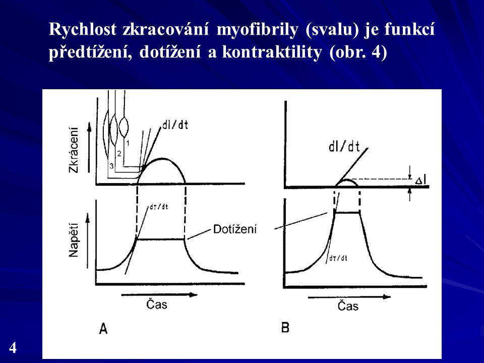 4 Rychlost zkracování myofibrily (svalu) je funkcí předtížení, dotížení a kontraktility (obr. 4)