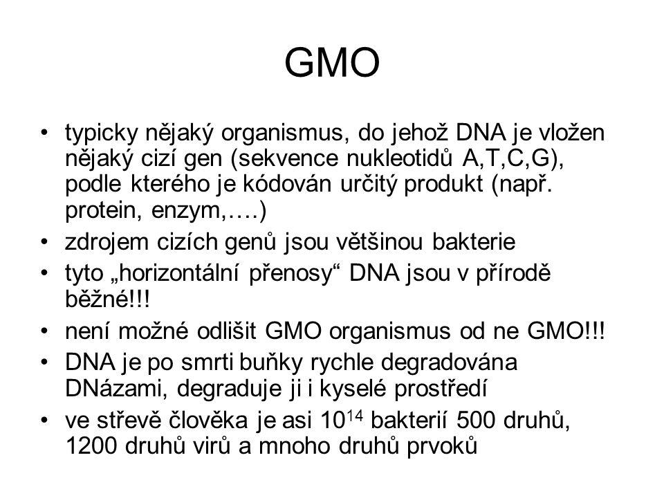 GMO typicky nějaký organismus, do jehož DNA je vložen nějaký cizí gen (sekvence nukleotidů A,T,C,G), podle kterého je kódován určitý produkt (např. pr