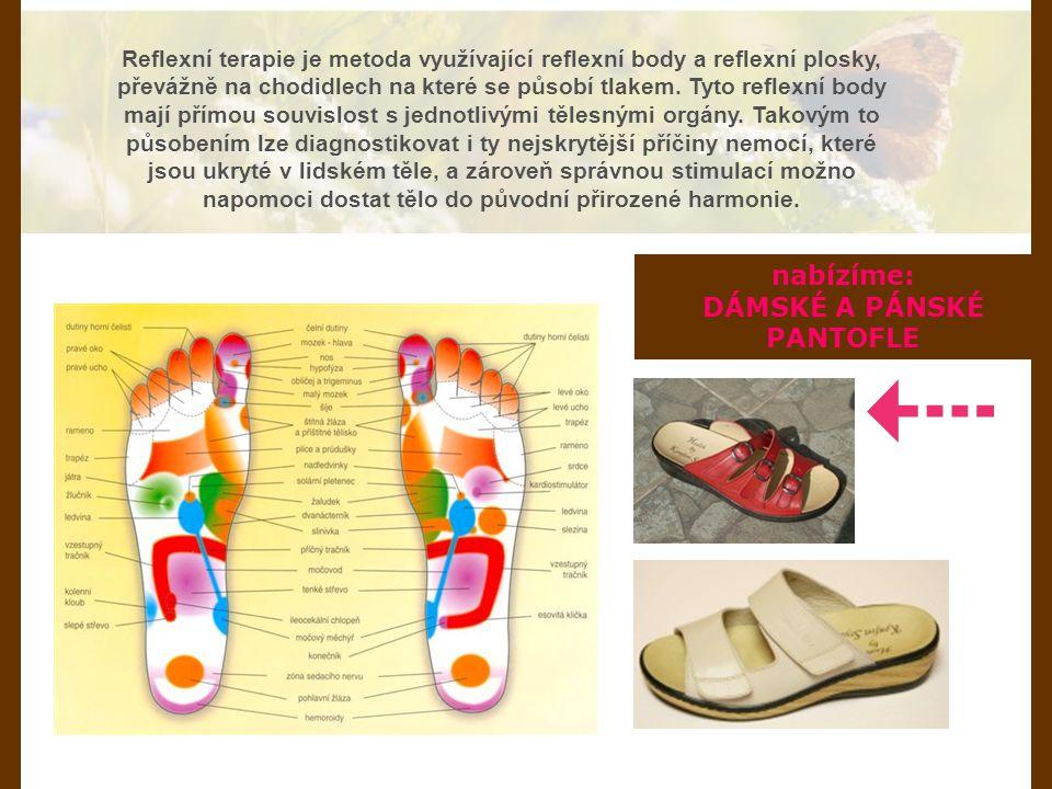 Reflexní terapie je metoda využívající reflexní body a reflexní plosky, převážně na chodidlech na které se působí tlakem. Tyto reflexní body mají přím