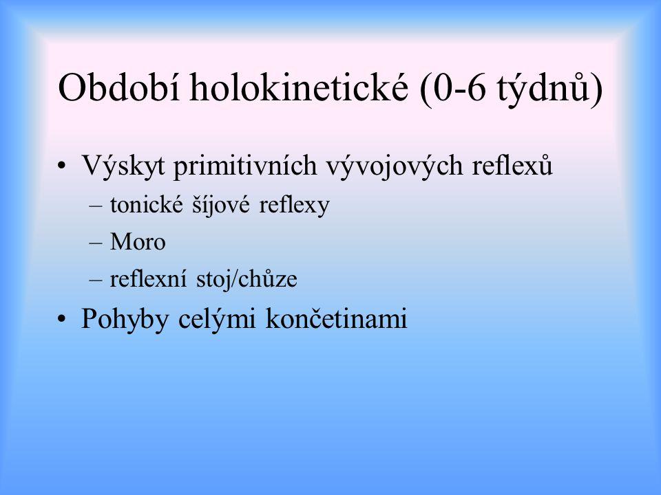Období počátku cílené motoriky (7.-13.