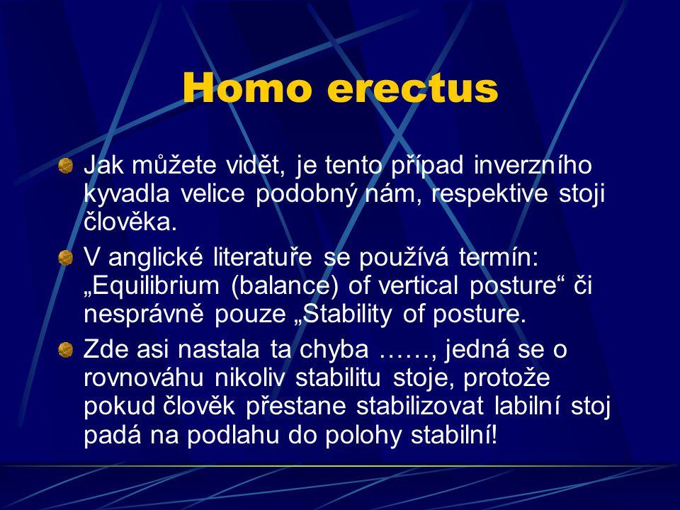 Homo erectus Jak můžete vidět, je tento případ inverzního kyvadla velice podobný nám, respektive stoji člověka. V anglické literatuře se používá termí