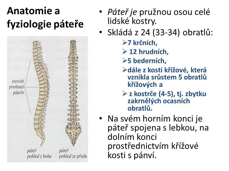 Anatomie a fyziologie páteře Páteř je pružnou osou celé lidské kostry. Skládá z 24 (33-34) obratlů:  7 krčních,  12 hrudních,  5 bederních,  dále