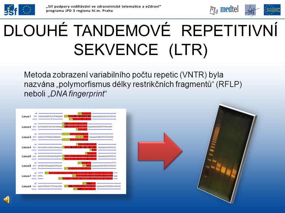 """DLOUHÉ TANDEMOVÉ REPETITIVNÍ SEKVENCE (LTR) Metoda zobrazení variabilního počtu repetic (VNTR) byla nazvána """"polymorfismus délky restrikčních fragment"""