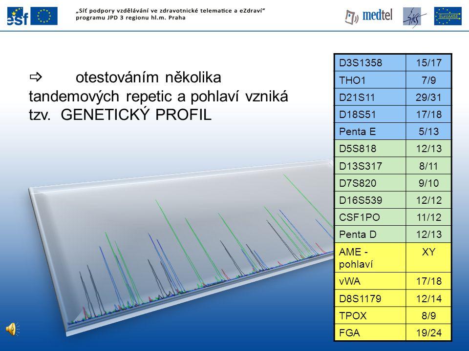 otestováním několika tandemových repetic a pohlaví vzniká tzv. GENETICKÝ PROFIL D3S135815/17 THO17/9 D21S1129/31 D18S5117/18 Penta E5/13 D5S81812/13
