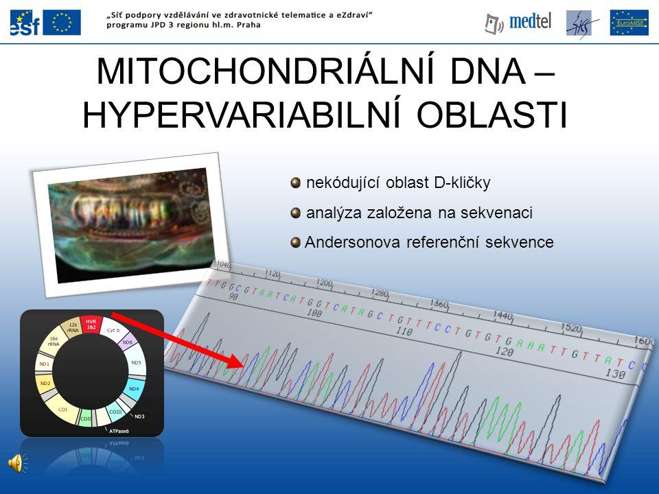 MITOCHONDRIÁLNÍ DNA – HYPERVARIABILNÍ OBLASTI nekódující oblast D-kličky analýza založena na sekvenaci Andersonova referenční sekvence