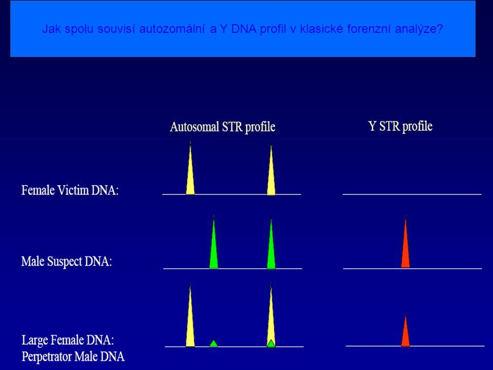 Jak spolu souvisí autozomální a Y DNA profil v klasické forenzní analýze?