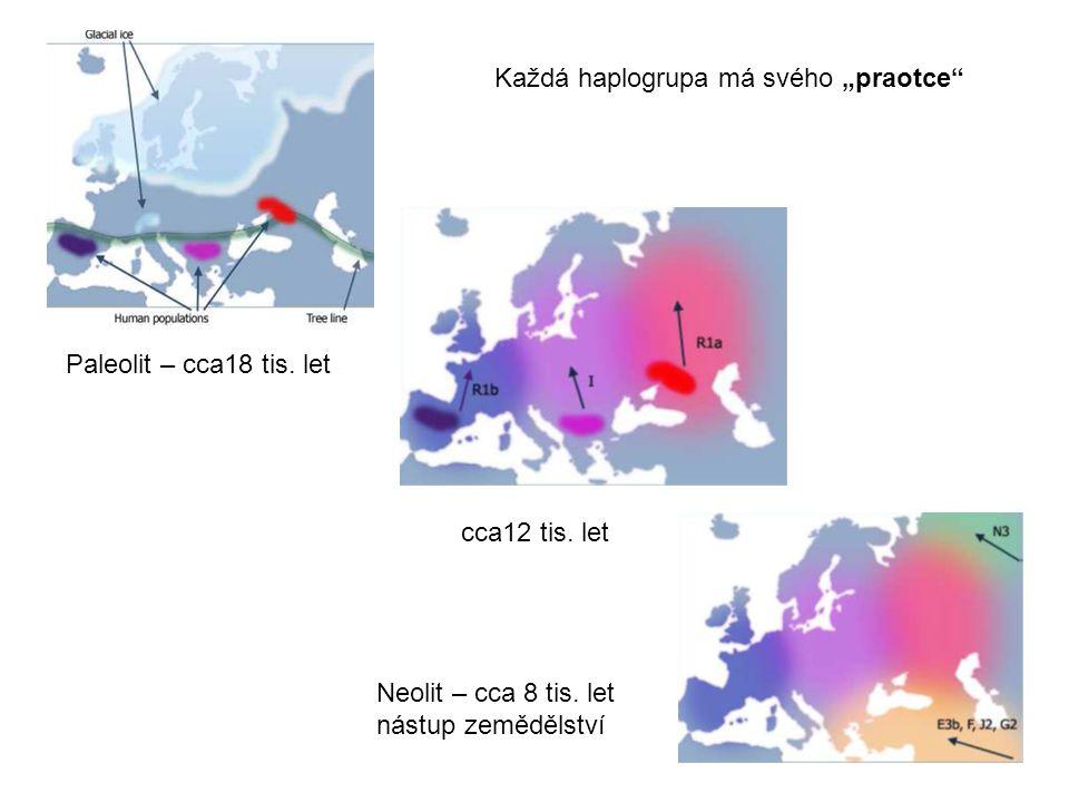 Paleolit – cca18 tis.let cca12 tis. let Neolit – cca 8 tis.