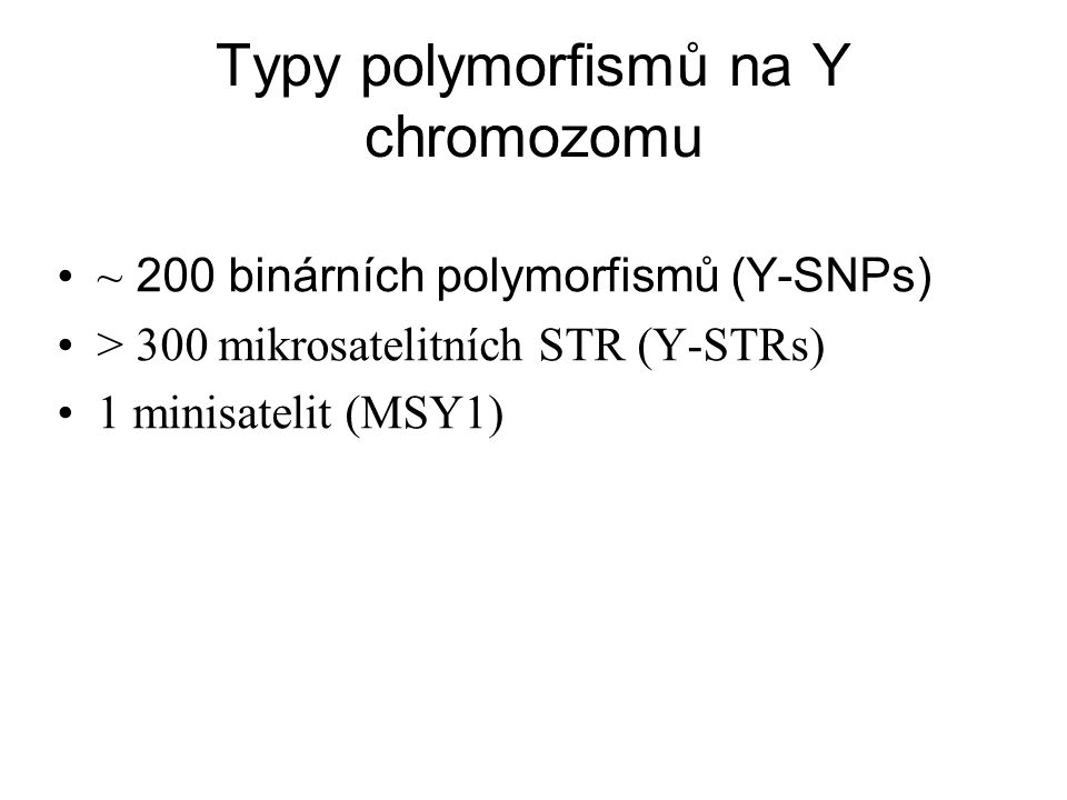 Jak DNA polymorfismy na Y chromozomu vznikají?