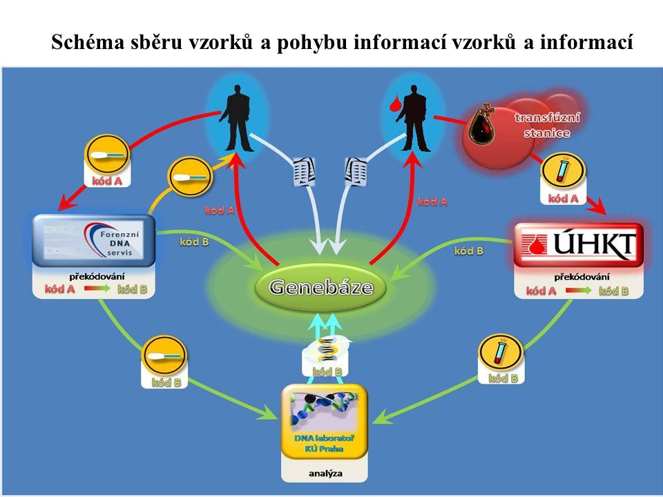 Schéma sběru vzorků a pohybu informací vzorků a informací