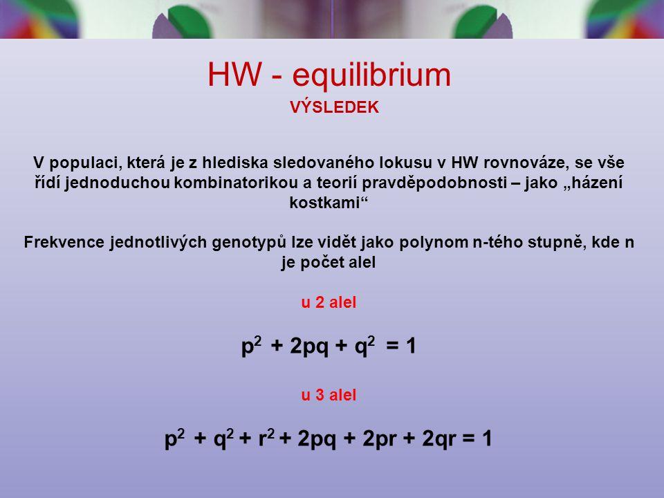"""HW - equilibrium VÝSLEDEK V populaci, která je z hlediska sledovaného lokusu v HW rovnováze, se vše řídí jednoduchou kombinatorikou a teorií pravděpodobnosti – jako """"házení kostkami Frekvence jednotlivých genotypů lze vidět jako polynom n-tého stupně, kde n je počet alel u 2 alel p 2 + 2pq + q 2 = 1 u 3 alel p 2 + q 2 + r 2 + 2pq + 2pr + 2qr = 1"""