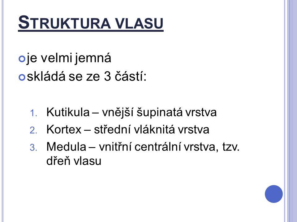 S TRUKTURA VLASU je velmi jemná skládá se ze 3 částí: 1. Kutikula – vnější šupinatá vrstva 2. Kortex – střední vláknitá vrstva 3. Medula – vnitřní cen