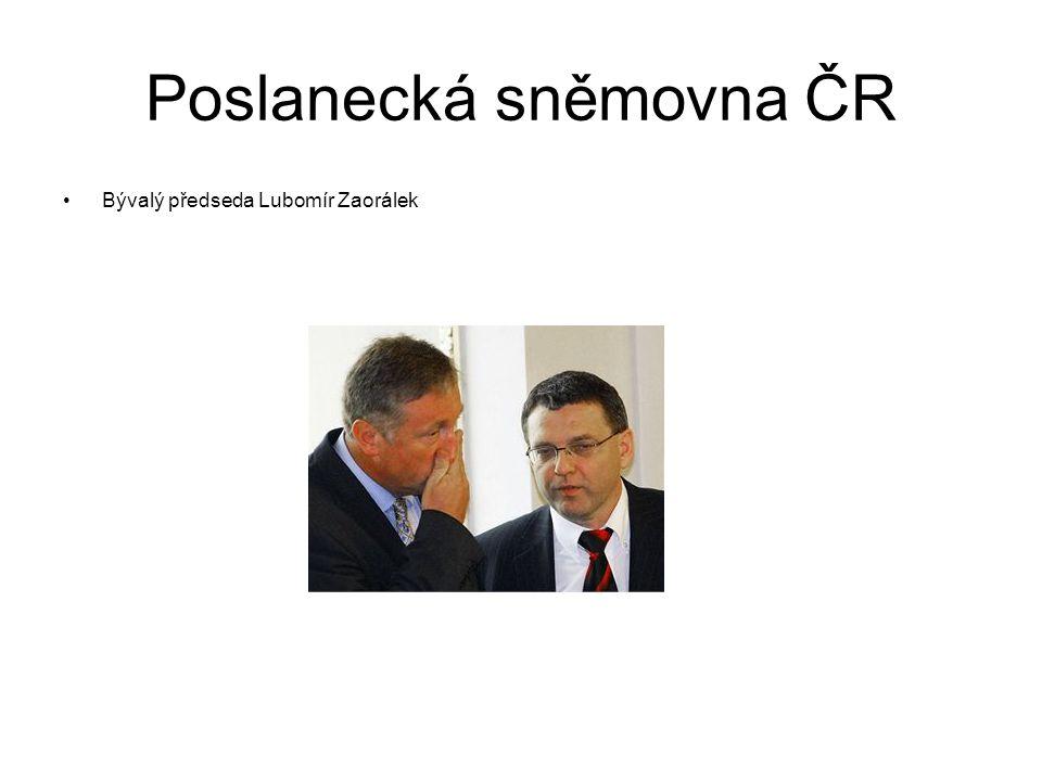 Zákonodárná moc Poslanecká sněmovna Parlamentu České republiky Česká republika je svrchovaný, jednotný a demokratický právní stát založený na úctě k právům a svobodám člověka a občana.