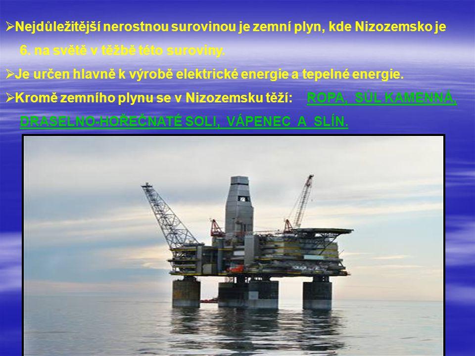  N Nejdůležitější nerostnou surovinou je zemní plyn, kde Nizozemsko je 6. na světě v těžbě této suroviny.  J Je určen hlavně k výrobě elektric