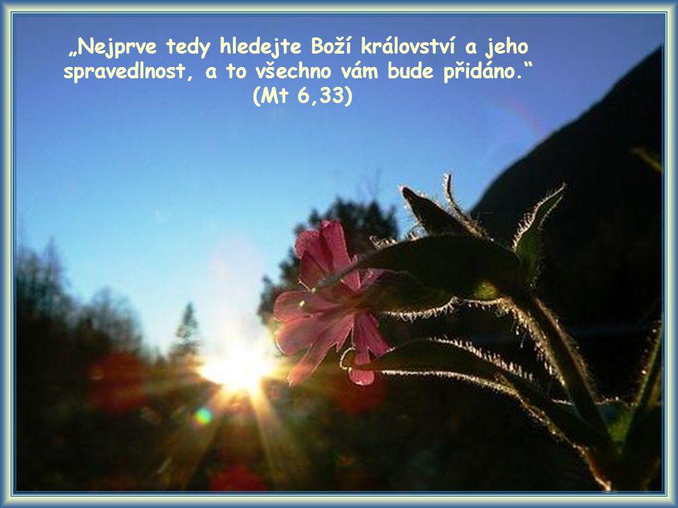 """""""Nejprve tedy hledejte Boží království a jeho spravedlnost, a to všechno vám bude přidáno. (Mt 6,33)"""