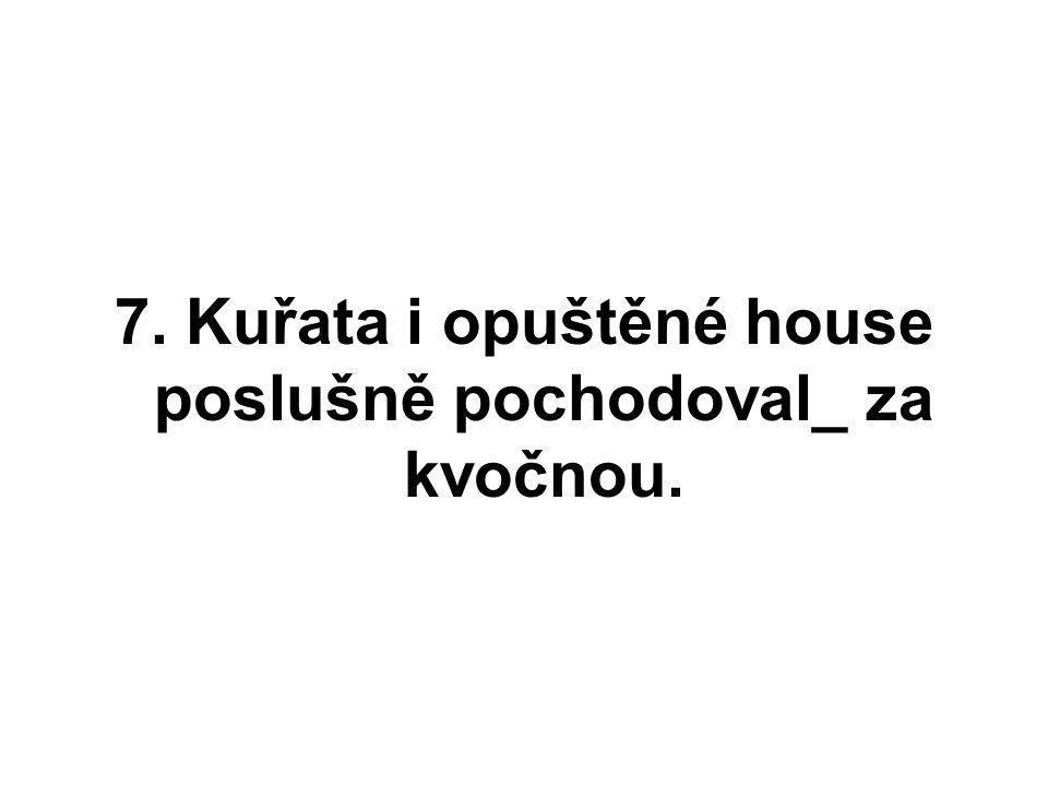 7. Kuřata i opuštěné house poslušně pochodoval_ za kvočnou.