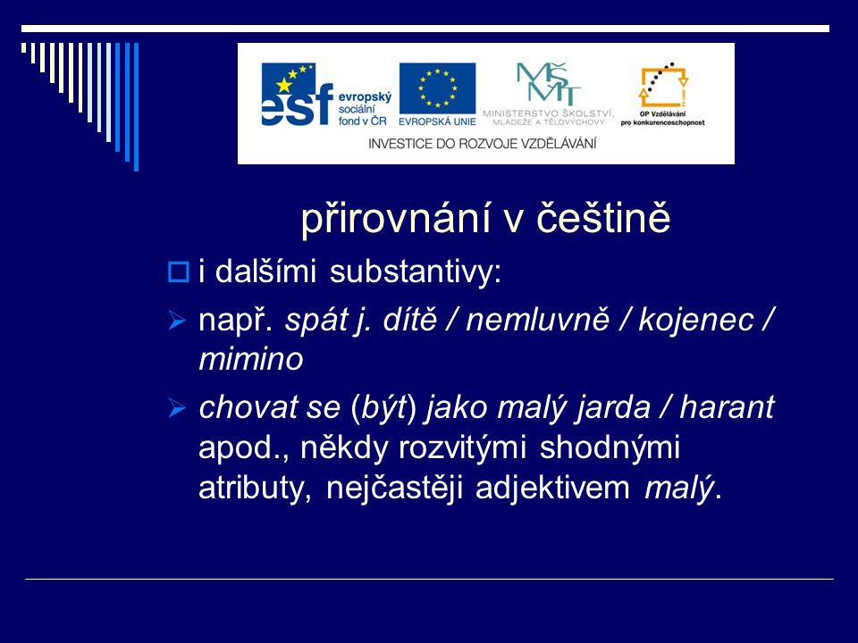 samostatný výstup projektu  Trojjazyčný rusko-česko-slovenský frazeokulturologický on-line slovník