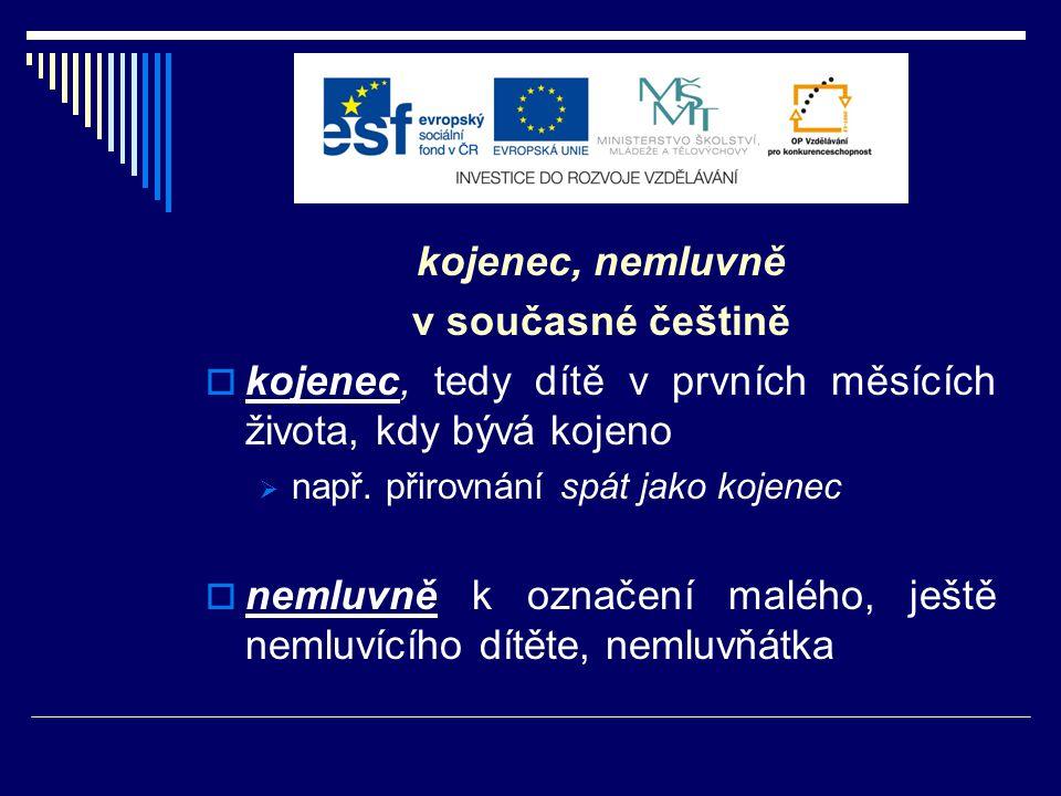 дитя a ребëнок  k českému dítě v RJ dvě substantiva  P.