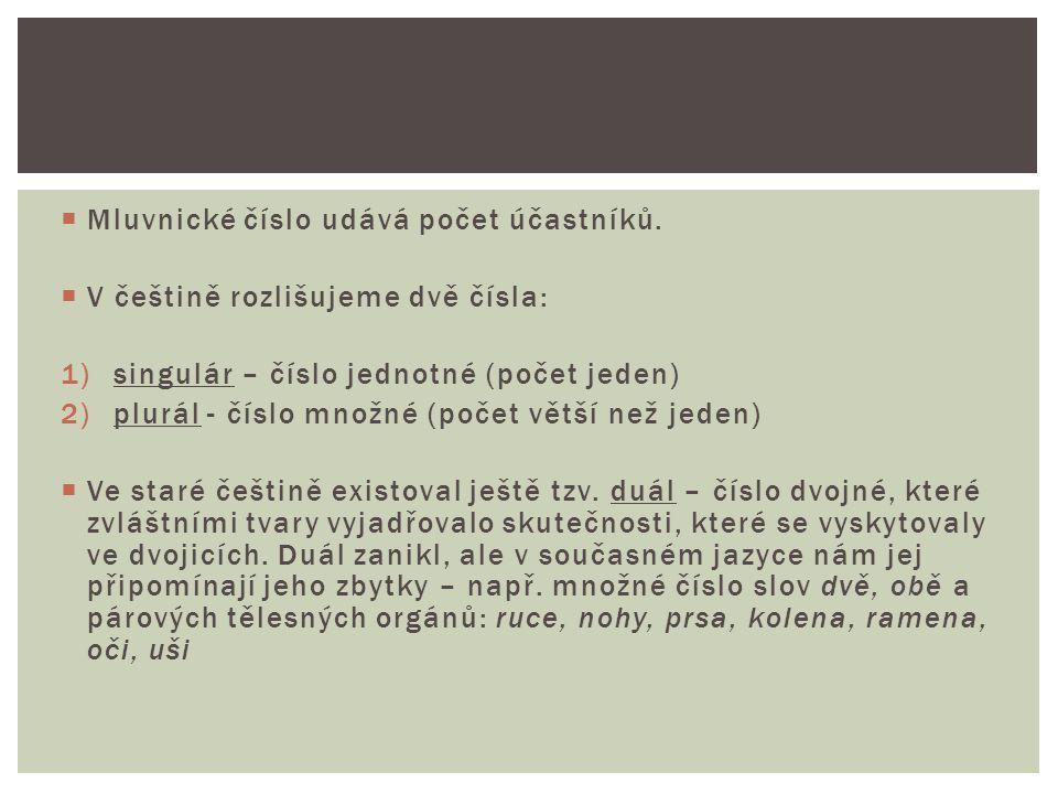  Mluvnické číslo udává počet účastníků.  V češtině rozlišujeme dvě čísla: 1)singulár – číslo jednotné (počet jeden) 2)plurál - číslo množné (počet v