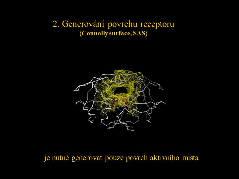 2. Generování povrchu receptoru (Connolly surface, SAS) je nutné generovat pouze povrch aktivního místa
